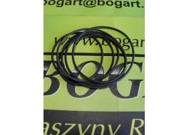 0616915 O-ring 250x3